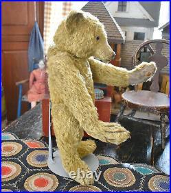 Antique Large Rare Early German Teddy Bear 18 Tall