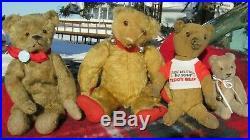 Antique Mohair Teddy Bear Rare Early Ideal Strunz Bing Steiff Bruin Vintage 14
