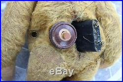 Extremely RARE and Unusual Early American Electric Bear c1908