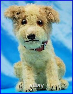 Extremely RARE early STEIFF Molly Dog. C 1925.10 inches