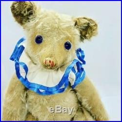 Extremely Rare antique steiff teddy Petsy bear early 1920s 22