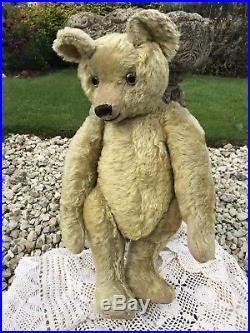 Gracie FURRY Rare Early English 1910/20s OMEGA Teddy Bear Hump Old Antique