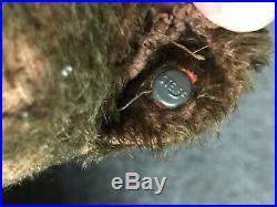 RARE EARLY ANTIQUE Circa 1910 STEIFF 12 Mechanical Tail Must C FF Button Cute