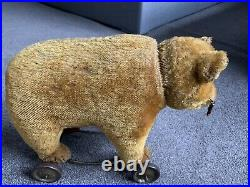 RARE Early Antique Large Schuco Tricky Cinnamon MohairYes No Bear Metal Wheels