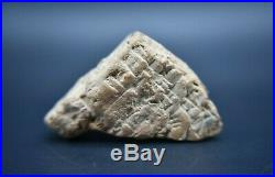 Rare Ancient Early form of writing clay tablet C. 1800 BC