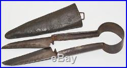 Rare Antique Early 19C 11 Sheep Shears with Leather Case PL2444
