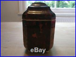 Rare Early Antique Regency Georgian Tortoise Shell Tea Caddy Meakers London