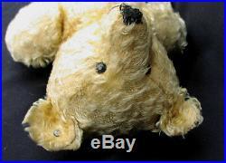 Rare Early Antique Steiff Teddy Bear 1915