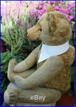 Rare early BING teddy bear c1910