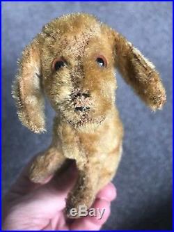 Very Rare Early 4 Antique Steiff Treff Miniature Mohair Dog No ID Must C Cute