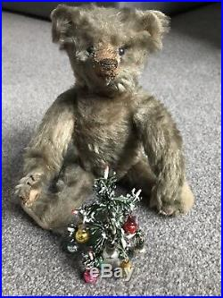 Very Rare Early Antique Steiff Bear 10 Buy Now No Res NO ID NICE CUTEST FACE