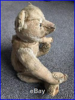 Very Rare Early Antique blank button Steiff Bear 12 Buy Now No Reserve