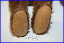 Xtra Rare 1910 Steiff 8 Cinnamon 5 Way Articulated Bear Early Wooden Eyes & Ff